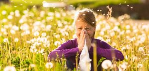 Mesa Arizona Allergy Help